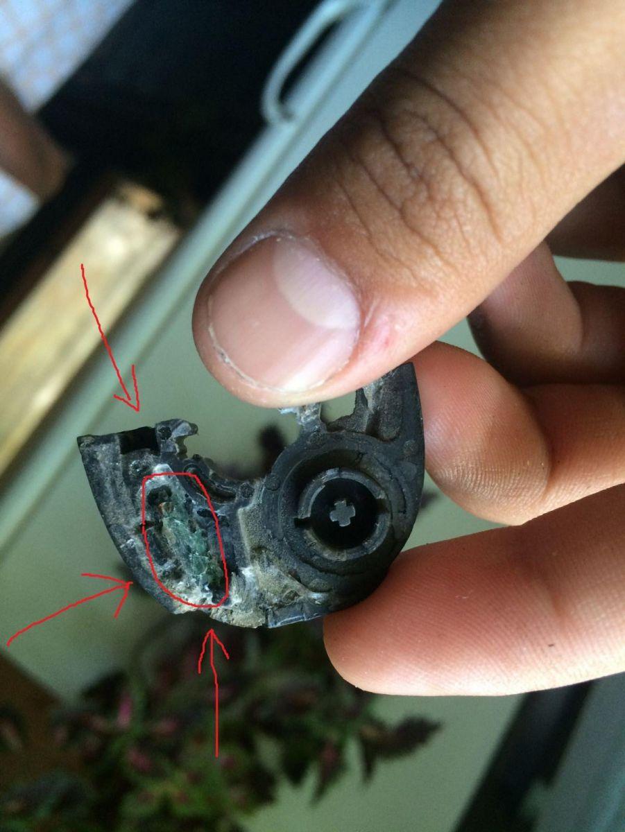 выделена капсула с чипом